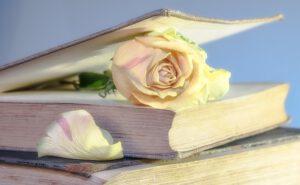 """Meine dunkle Vanessa """"Meine dunkle Vanessa"""" von Kate Elisabeth Russell: eine Liebe vor 17 Jahren"""
