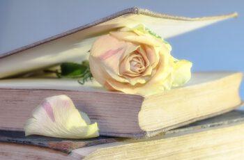 Budget für Bücher Tolle Möglichkeiten beim Buchkauf, Geld zu sparen